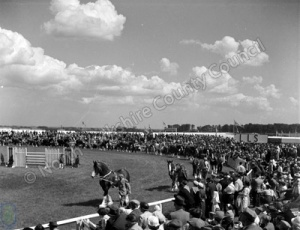 Great Yorkshire Show, 1956